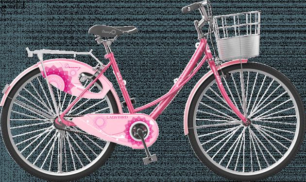 BSA Ladybird Dreamz 26T Flamingo Pink